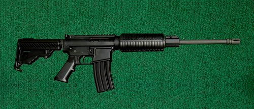 DPMS Panther Sport - Silver Dollar Firearms